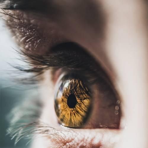 Aprovecha un paseo para ejercitar los ojos