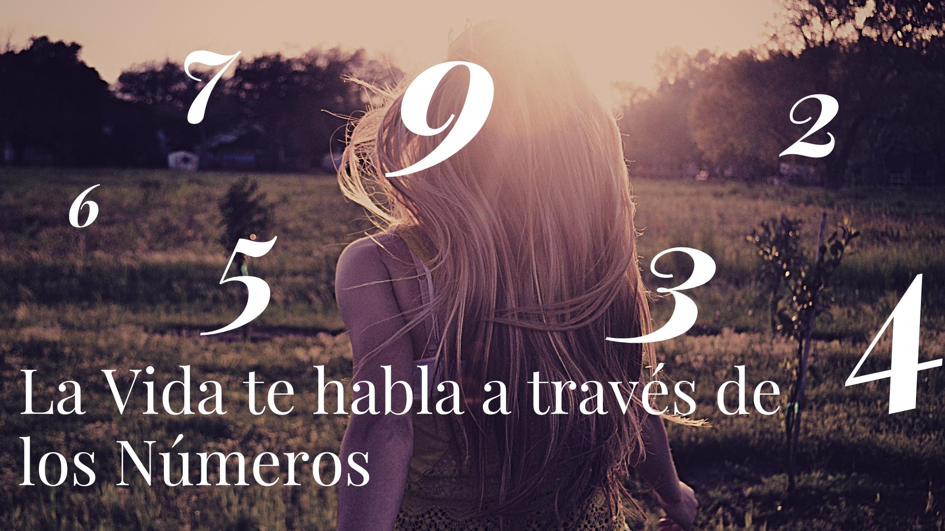 La Vida te habla a través de los Números